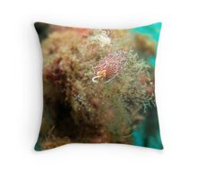 Cratena peregrina Throw Pillow