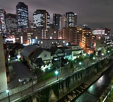 Tokyo Skyline by Guillaume Marcotte