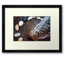 OnePhotoPerDay series: 018 by L. Framed Print