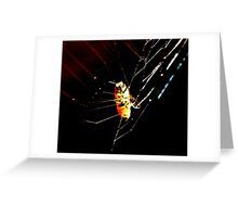 "photoj Bug Time, ""Got You"" Greeting Card"