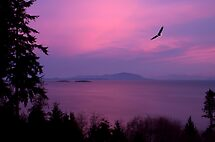 Sunrise Over the Strait by Martin Smart
