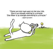 Everything is a miracle / Einstein quote / Cat Doodle by eyecreate