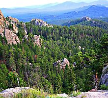 View from Needles Highway by tanmari