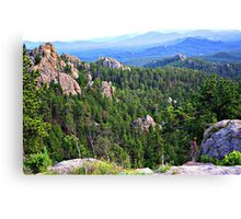 View from Needles Highway Canvas Print