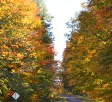 Driving into autumn colors Sticker