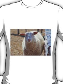 Long Island Sheep T-Shirt