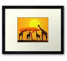 Giraffes & Sunset in African Safari   Framed Print