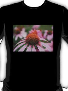 Purple Coneflowers T-Shirt