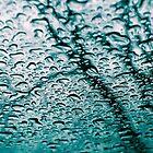 Rain Roof by Alex Roper