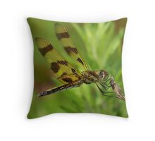 A Halloween Pennant Dragonfly. Throw Pillow
