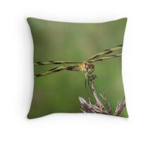 Halloween Pennant Dragonfly front and center. Throw Pillow