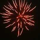 Happy New Year; Fireworks from the neighborhood by leih2008