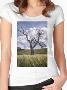 Dead Tree Dancing In A Cornfield Women's Fitted Scoop T-Shirt