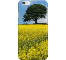 Sunshine Growing At The Roots Of A Tree iPhone Case/Skin