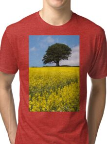Sunshine Growing At The Roots Of A Tree Tri-blend T-Shirt