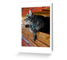 Jasper Greeting Card