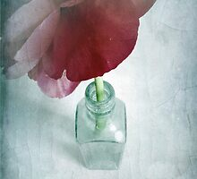Peony In Glass Bottle by AllyNCoxon