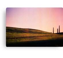 Sydney Park St Peters #1 Canvas Print