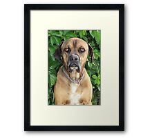 Straight Back at YA! Framed Print