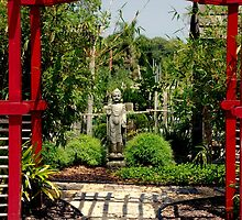 Meditation Garden by Susanne Van Hulst