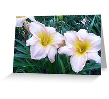 Earnest Yearwood - A Pink Daylily Greeting Card