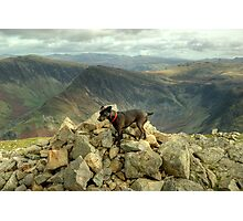 Tarn the Terrier... on High Crag Photographic Print
