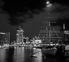 Moon dance by Nicoletté Thain Photography