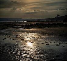 A Walk Along The Shore by Michael Carter