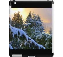 Frosty Alpenglow iPad Case/Skin