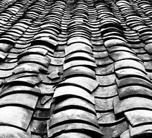 """Flat Out in Mekong Delta"" - Vietnam by Tamara Brown"