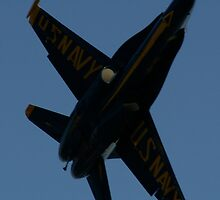 Blue Angels by darb85