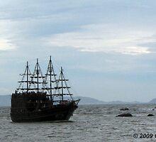 Yo Ho Ho! It's a pirate ship matee! by www4gsus