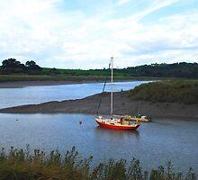 Seamills Harbour, Bristol by Dawn B Davies-McIninch