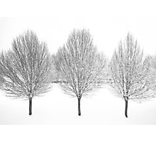 Three-in-a-row Photographic Print
