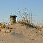 The Watch Tower by Monte Morton
