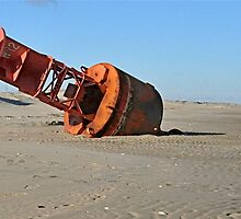 Beached Buoy   by Monte Morton
