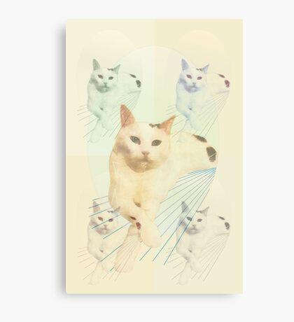 Monty Pop  Canvas Print