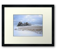 Cold Day in Hellsinki  Framed Print