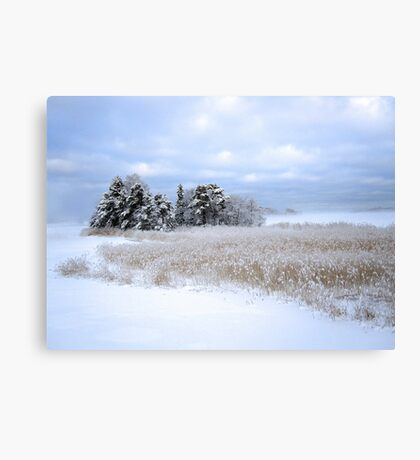 Cold Day in Hellsinki  Canvas Print