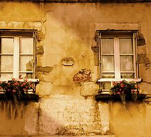 Windows of Normandy by Sarah G.