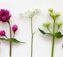 Wild Flowers Sticker