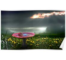 Meadow Sunset Poster