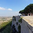 View from Mdina by Tom Gomez