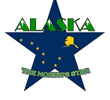 ALASKA ~ THE NORTH'S STAR by Ed Rosek