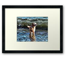 It's Behind You!!! Framed Print