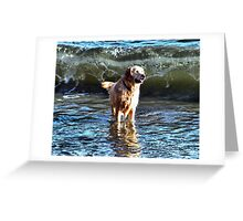 It's Behind You!!! Greeting Card