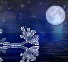 On the Moonlight by Veikko  Suikkanen