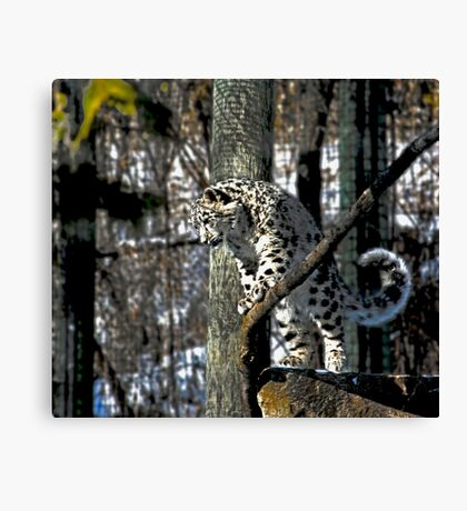 What's up.........? Canvas Print