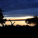 Lake Mburo Sunset - Uganda by Derek McMorrine