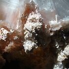 Random Birth of What?- is Calcite. Solved by  ingridthecrafty! by Iva Penner